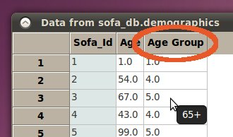 agegroup_added_to_data.jpg